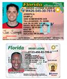 drivers license/><br />